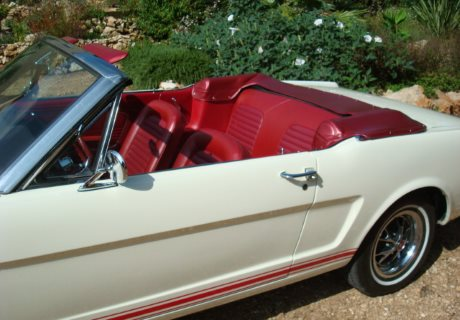 location ford mustang gt 1966 blanche 1966 blanche pezenas. Black Bedroom Furniture Sets. Home Design Ideas