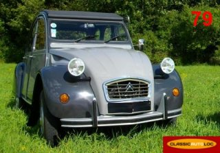 Citroen 2CV Charleston 1984 Gris 2 tons