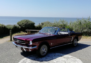 Ford MUSTANG 1964 BORDEAUX NACRE