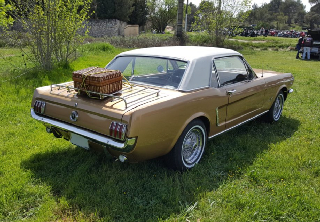 Location Ford MUSTANG  1964 Bronze