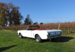 Location Ford MUSTANG 1965 blanc d'ivoire