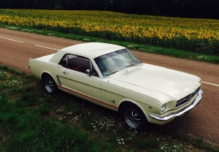 Location Ford Mustang 1965 blanc ivoire