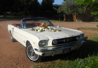 Ford Mustang 1966 Cr�me