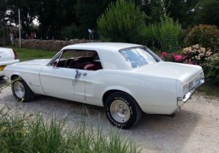 Location Ford  Mustang  1967 Blanc