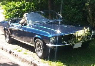 Location Ford mustang 1968 bleu